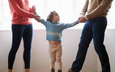 Posibilidad de pedir el título de familia numerosa